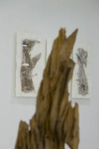 expo Sansonnens Rohrbach